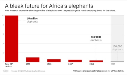 elephants-populations