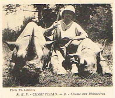 rhinoceros tchad 2.png