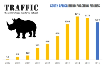 south-africa-rhino-stats-2017