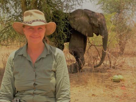 sos elephant Tchad.jpg